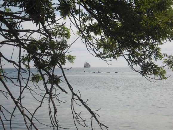 http://photographe-perdu.cowblog.fr/images/DSCN0995.jpg